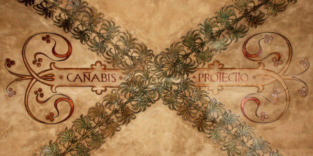 portici canabis